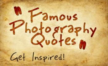Photographs quote #1