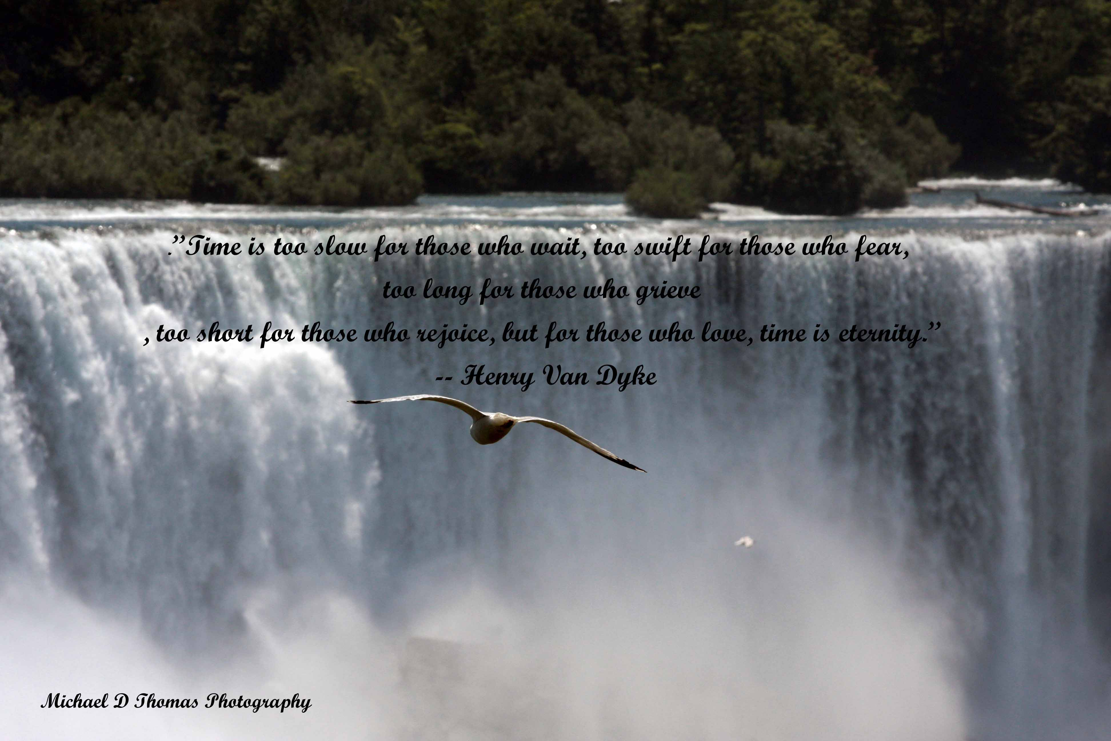 Picnic quote #2