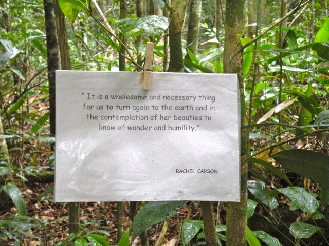 Plantations quote #2