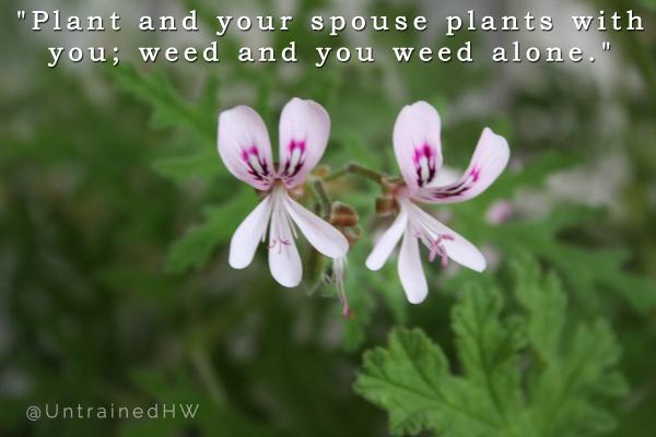 Plants quote #5