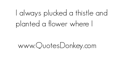 Plucked quote #2