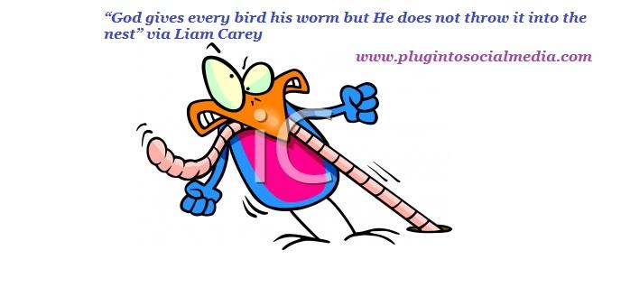 Plug quote #1
