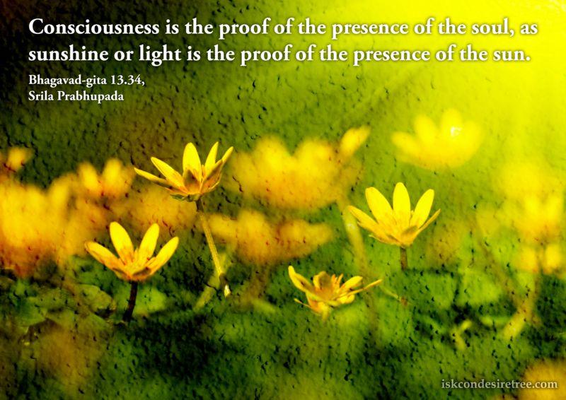 Presence quote #7