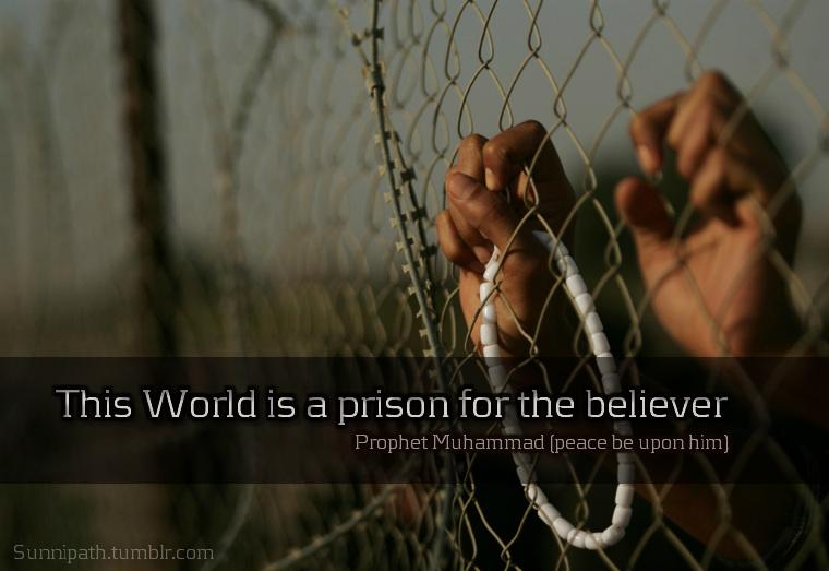 Prison quote #6