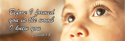 Pro Life Quotes Custom Famous Quotes About 'prolife'  Sualci Quotes
