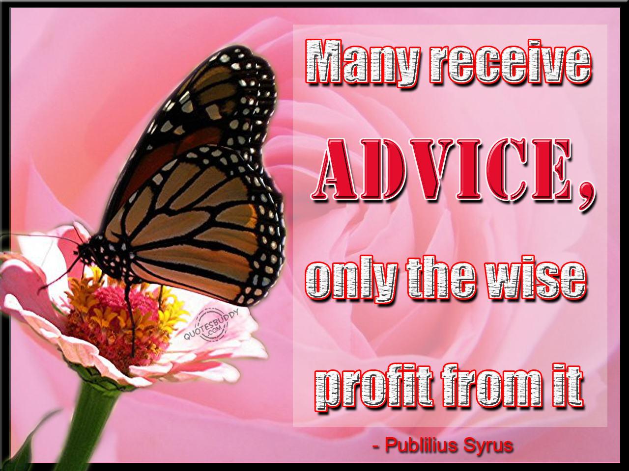 Profit quote #4