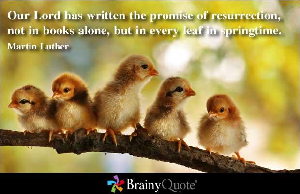 Promised quote #2