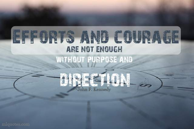 Purpose quote #8