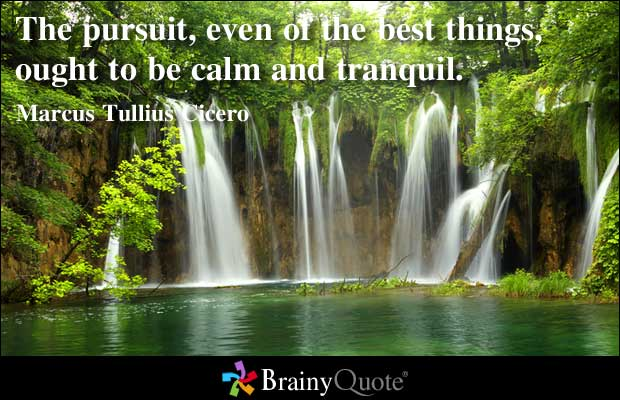 Pursuit quote #3