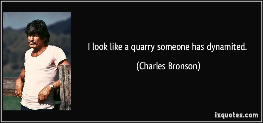 Quarry quote #1