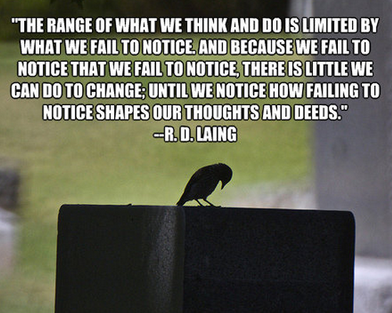 R. D. Laing's quote #2