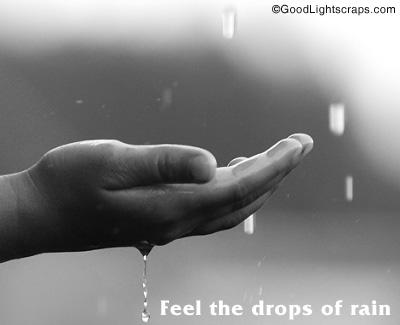 Rainy quote #7