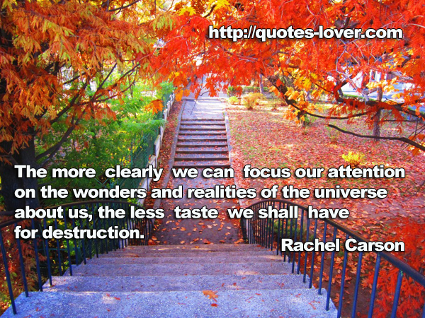 Realities quote #2