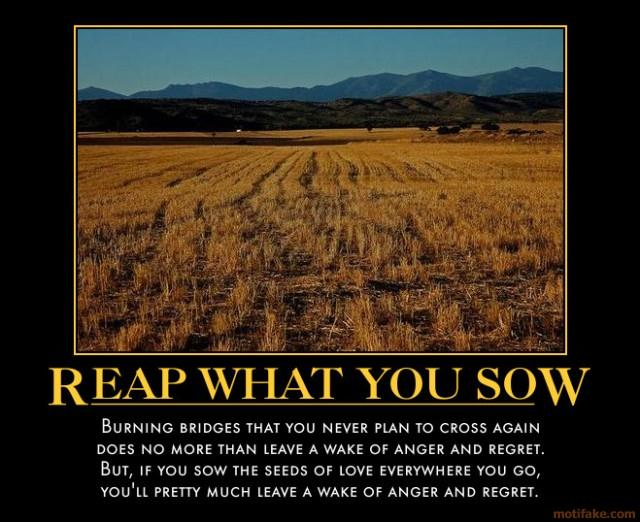 Reap quote #8