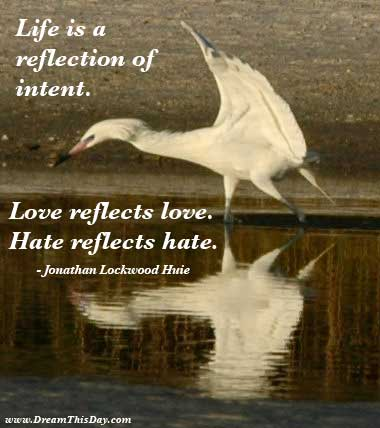 Reflected quote #4