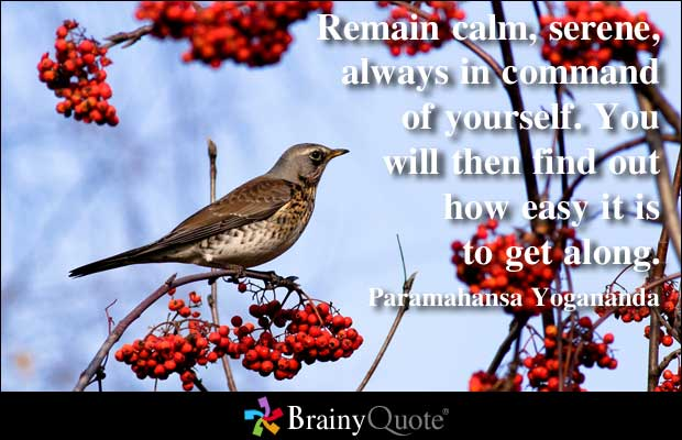 Remain quote #8
