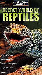 Reptiles quote #2