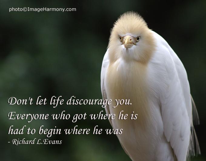 Richard L. Evans's quote #1