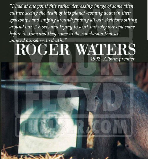 Roger Waters's quote #6