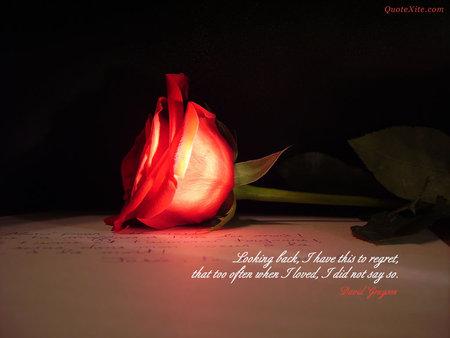 Rose quote #4