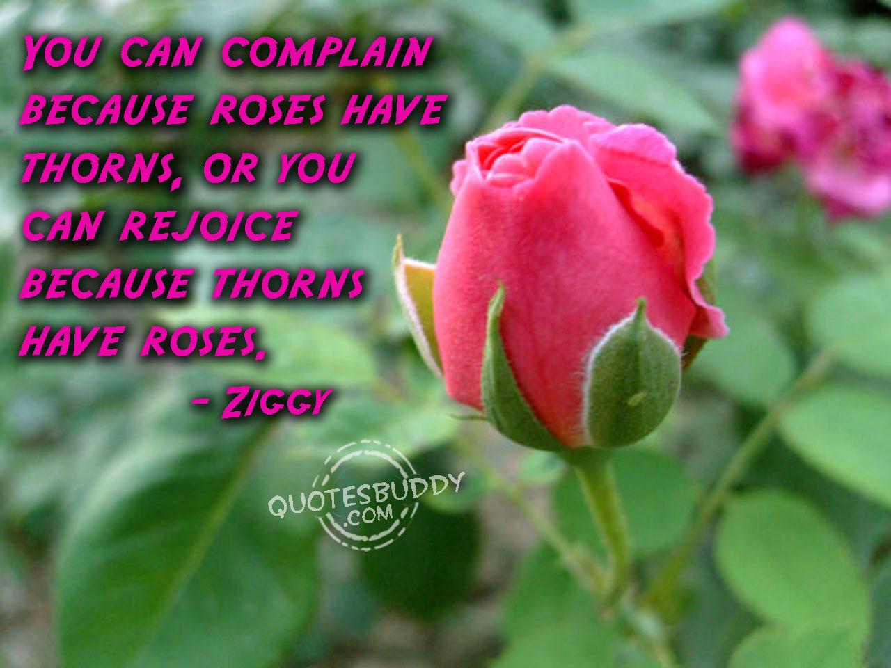 Roses quote #4