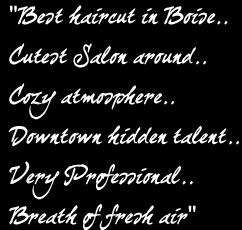 Salon quote #1