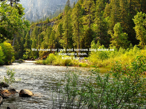 Scenic quote #2