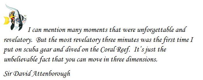 Scuba Dive quote #2