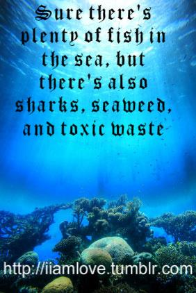 Seaweed quote #2