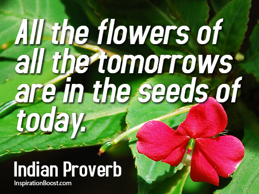 Seeds quote #2