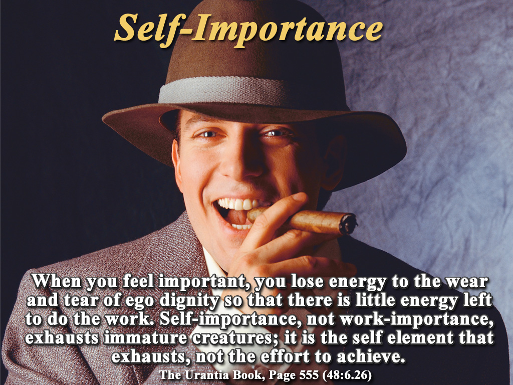 Self-Importance quote