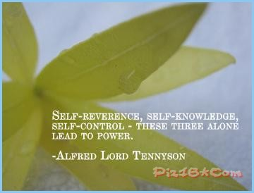 Self-Knowledge quote #2