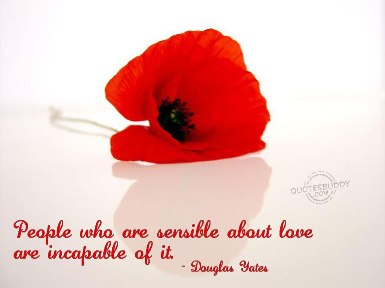 Sensible quote #3