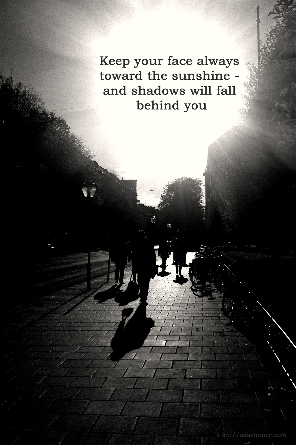 Shadows quote #6