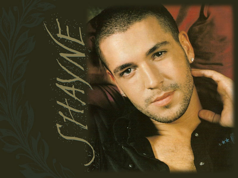 Shayne Ward's quote #5