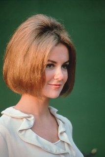 Shelley Fabares's quote #3