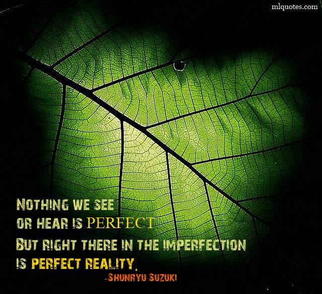 Shunryu Suzuki's quote #1