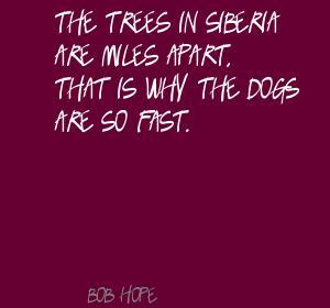 Siberia quote #2