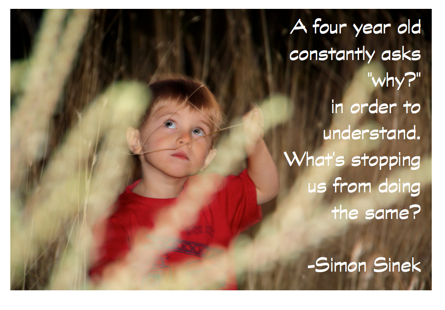 Simon Sinek's quote #6