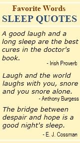 Slept quote #2