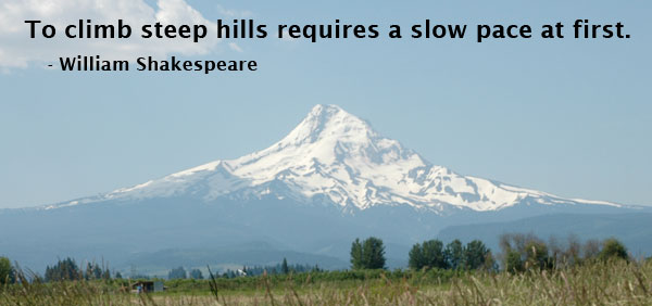 Slowness quote #1