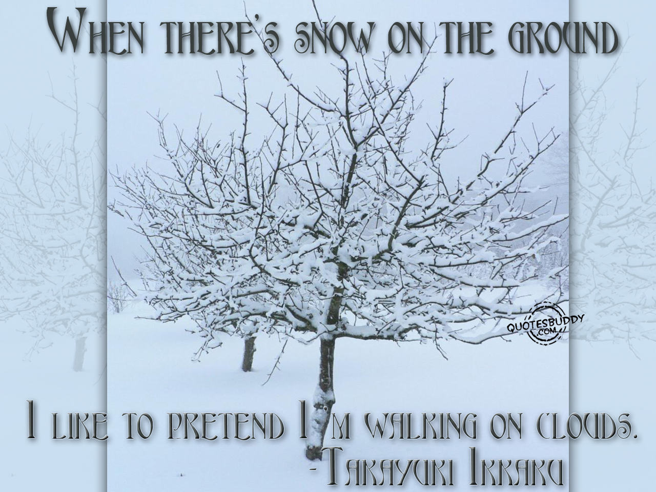 Snowing quote #2