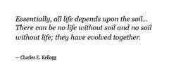 Soil quote #6