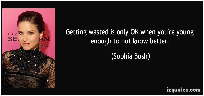 Sophia Bush's quote #8