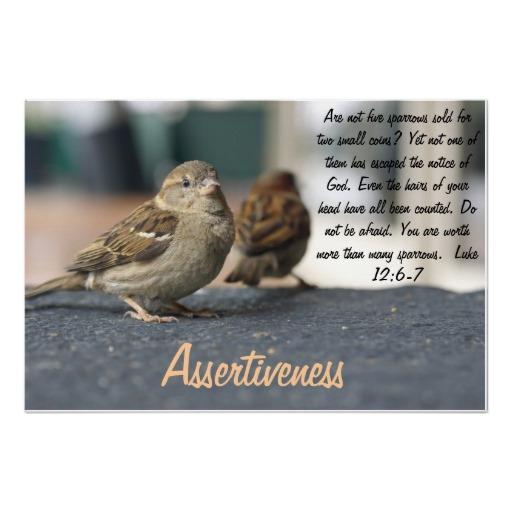 Sparrows quote #2