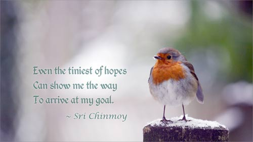 Sri Chinmoy's quote #7