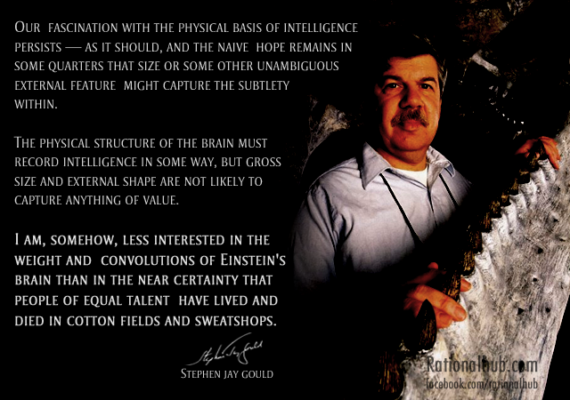 Stephen Jay Gould's quote #5