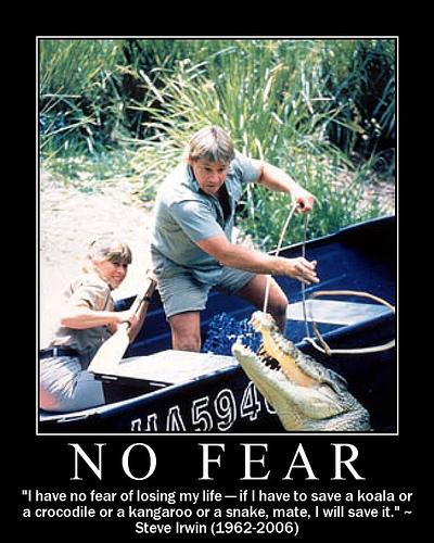 Steve Irwin's quote #8