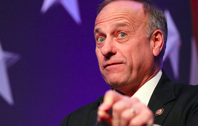 Steve King's quote #3