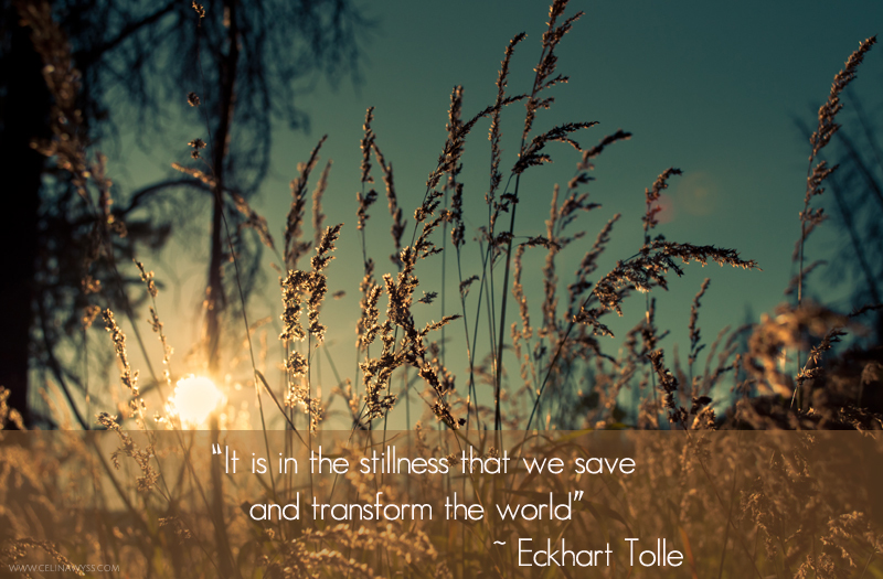 Stillness quote #2